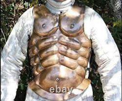 Medieval Brass Roman Greek Muscle Body Armour Costume Christmas Gift Cosplay
